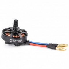 Walkera - Motore Brushless (CCW) per Runner 250