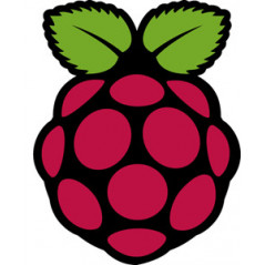 Rapsberry Pi
